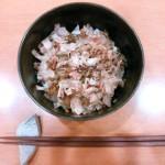 鰹節と青ネギののっけご飯